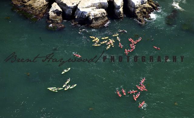 La Jolla Cove Kayak Aerial Scenic Image