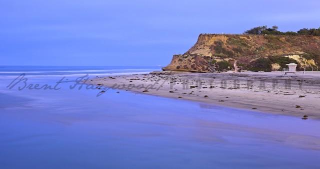 Del Mar San Diego Dog Beach