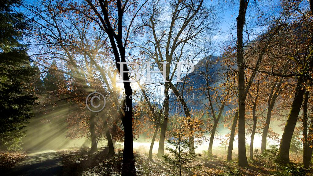 Yosemite Valley Photography Photographer